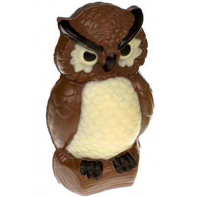 Čokoládová sova