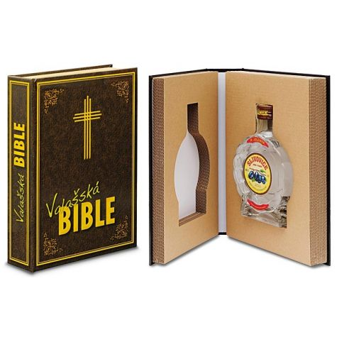 Léčivá kniha - Valašská bible 1
