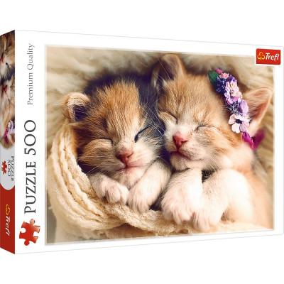 Trefl Puzzle Spící koťata 500 dílků