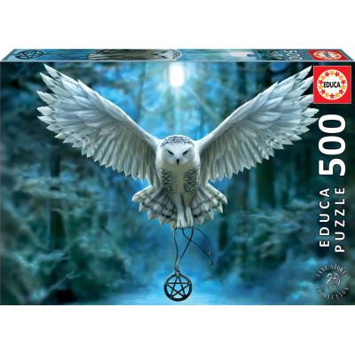 EDUCA Puzzle Probuď svoji magii 500 dílků