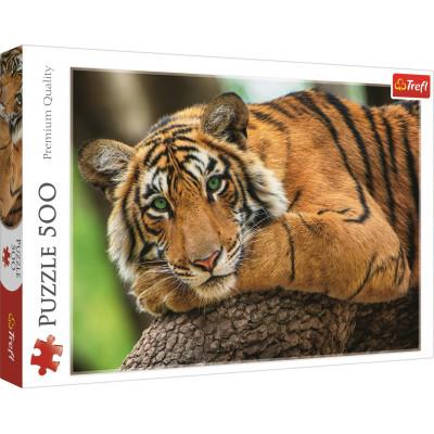 TREFL Puzzle Tygří portrét 500 dílků