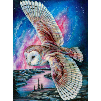 Diamantové malování - sova pálená