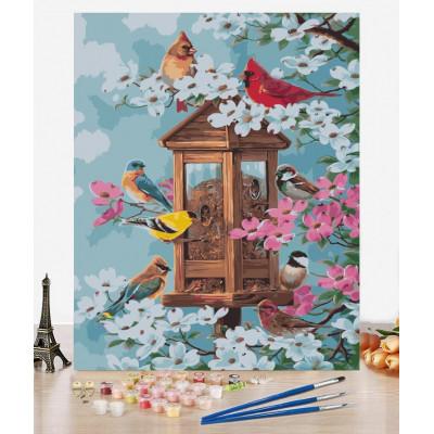 Malování podle čísel - ptáčci