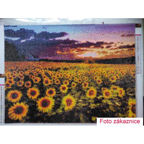 Diamantové malování - slunečnicové pole