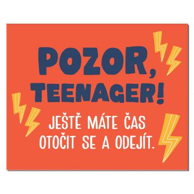 Albi Cedulka na dveře - Teenager
